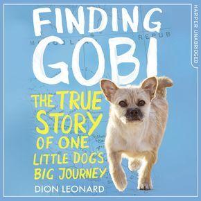 Finding Gobi thumbnail