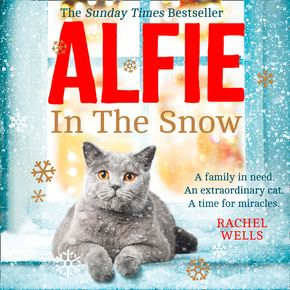 Alfie in the Snow thumbnail