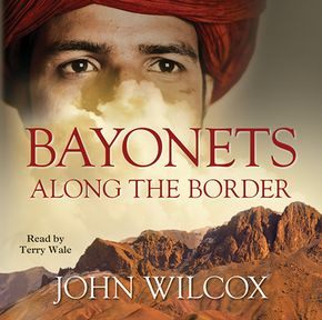 Bayonets Along The Border thumbnail