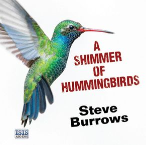 A Shimmer Of Hummingbirds thumbnail