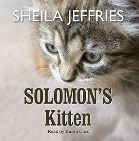 Solomon's Kitten thumbnail