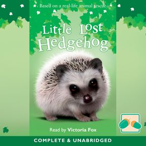 Little Lost Hedgehog thumbnail