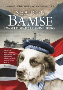 Sea Dog Bamse thumbnail